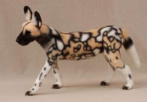 African wild dog by LisaAP