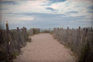 Rehoboth Beach by aclay08