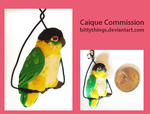 Caique - COMMISSION by Bittythings