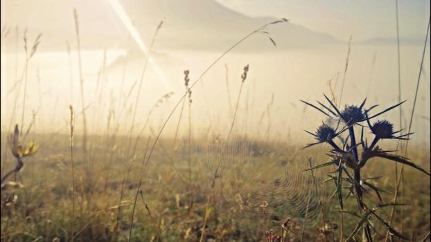 Castelluccio in the morning 4 by Hellle