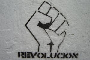 Revolution by molecula