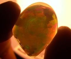 Opal, fourth shot. by indigartistic