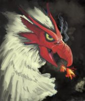 .:Blaziken:. by Madame-Clockwork