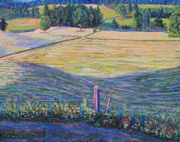 Sun Lit Fields During 1st Harvest by mothandashes