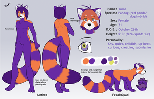 Yume ref sheet 2.0 by PurplePandog