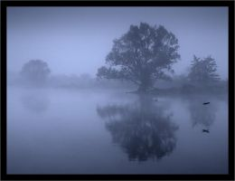 morning landscape 11 by wienwal