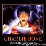 Charlie Bone Poster 1 by Chrissiannie