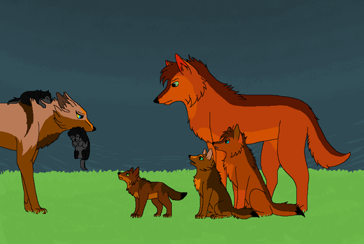 New Additions by Kityote