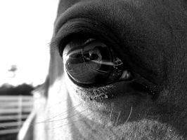 'In the Eye' by ilovelucy365