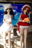 Dollfie Christmas 01 by ultima-i