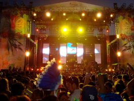 electric daisy canival 03. by ShadowNeko13