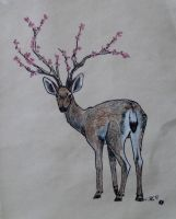 Deer and Cherry Blossoms by IckyDog