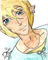 Link by Dream-came-true