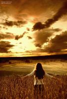 Requiem of a Dream by IsacGoulart