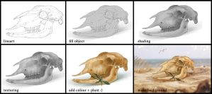 Sheep`s skull process by Azot2014