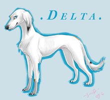 Delta Saluki by swift-whippet