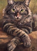 Raggles by screwbald