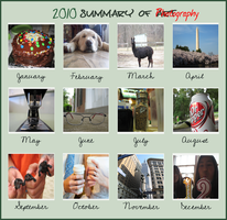 2010 Summary of Photography by Fimrah