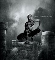 Spiderman by crilleb50