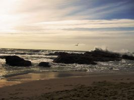 Half Moon Bay II by transcendelia