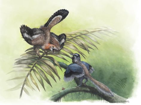 The Earliest Birds by EWilloughby
