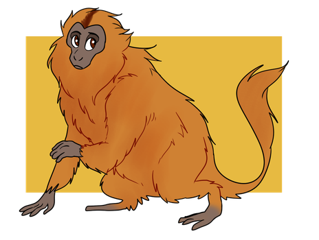 Its A Monkey by Chickenly