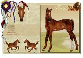 Foal design 2 by Darya87