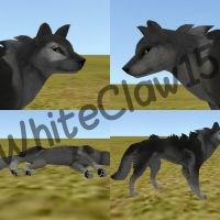 Realistic FH Wolf preset! by WhiteClaw15