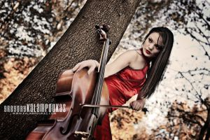 Sweet Cello III by gregkalamp