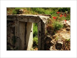 Red flowers on antique stone by DanStefan