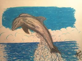 dolphin practise by tonez2