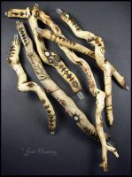Faery Wands - Drift wood and gemstones by andromeda