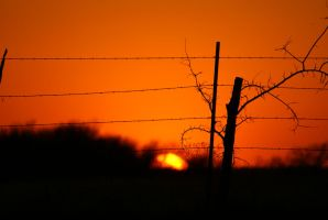Sunset Series - Fenced In 2 by JPDingman
