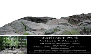 Stones and Roots PNG by CD-STOCK Premium Stock by CD-STOCK