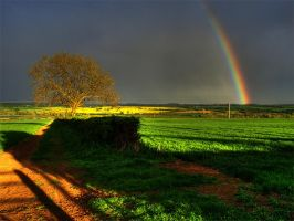 Rainbow in the evening by ChrisDonohoe
