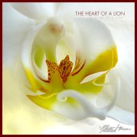 The heart of a lion by diesnail