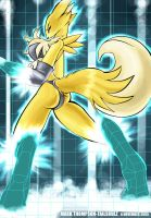 Matrix Digivolve- Renamon by tailsrulz