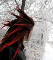Axel: Endless Winter by pixiedustling