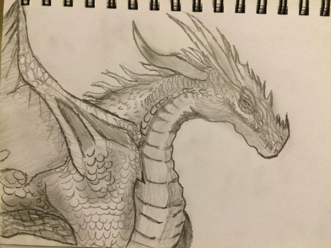 Dragon Sketch by Elso12