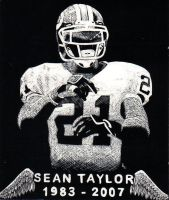 Sean Taylor by smeajul