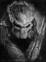 Predator by NaurCalad