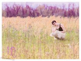 In a Field by a Violet Forest by photographs-by-day