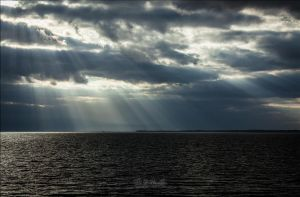 Dark Sea and Grey Sky Rays by BFGL