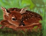 Baby Deer - 15 out of 60 by Leia1987