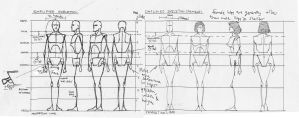 Figure Proportion Ref by amade