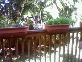 my porch by bettyb1270