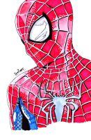 The Amazing Spiderman 2 by samrogers