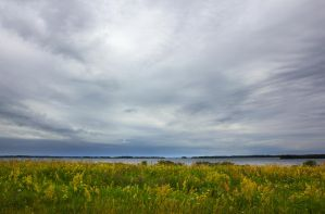 Clouds and Flowers by DeingeL