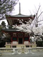 Chion-in 2 by thecomingwinter