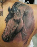 Horse Power Tattoo by alekspunktattoos